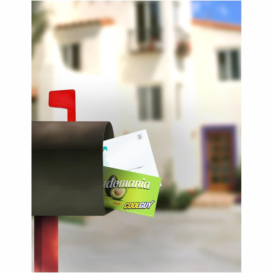 Direct Mailing Printing Wicked Blue Owl Creative Marketing Calgary Alberta Canada